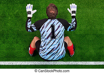 Overhead shot of a goalkeeper on the goal line - Overhead...