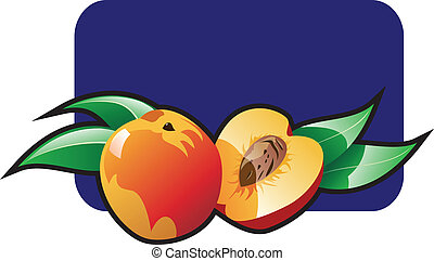 Peach - Vector color illustration of a peach.