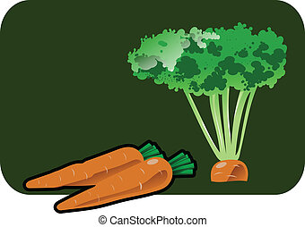 carrot - Vector color illustration of a carrot.