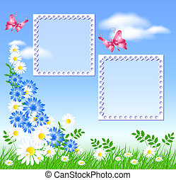 Daisies on the green grass and butterflies