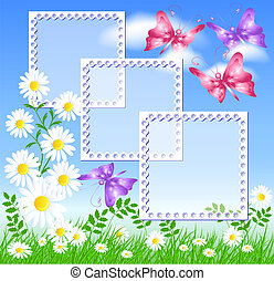 Daisies on the green grass and butterflies - Camomiles on...