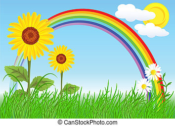 Sunflowers with green grass and rainbow