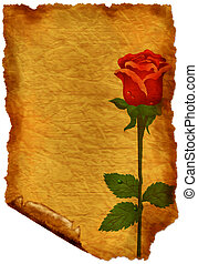 Old paper with rose - crumple parchment paper texture...