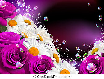 Daisies and roses - Daisies, roses and bubbles