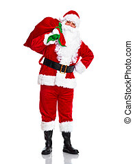 Santa Claus - Happy traditional Santa Claus with bag...