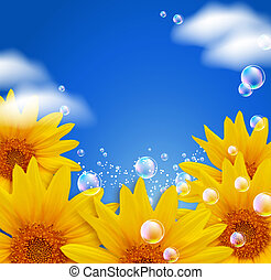 Sky and sunflowers - Sky, sunflowers, clouds and bubbles