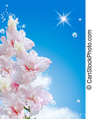Gladiolus against the sky - Gladiolus and bubbles against...