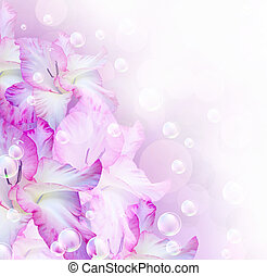 Gladiolus - Card with gladiolus, bubbles and stars