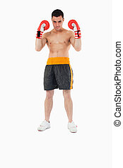 Boxer with strong fighting spirit