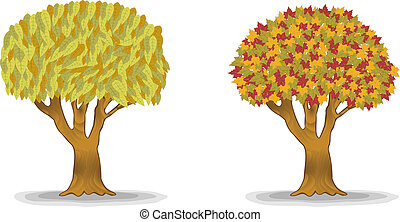autumn trees with detail leaves