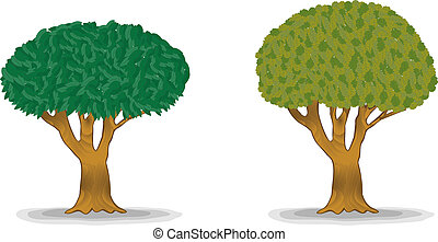 green trees with detail leaves