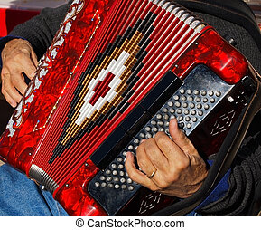 Accordion Player - Closeup detail of hands playing a red...