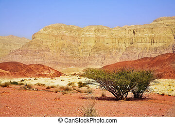 Unique park Timna in desert Arava near to the well-known sea...