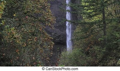 Latourell Falls in Portland Oregon along Historic Highway 30...