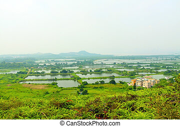 Fish ponds and farmland in Hong Kong