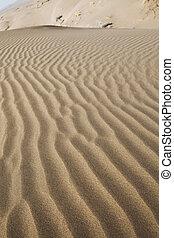 Desert dunes in iran
