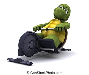 tortoise training on a rowing machine - 3d render of a...