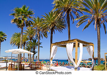 Ibiza Platja En bossa beach with palm trees a party landmark