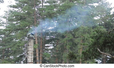 Smoking hut chimney in the forest