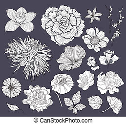 Flower design elements set - Set of flowers. Floral...