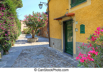 Small courtyard in Portofino, Italy. - Small courtyard and...