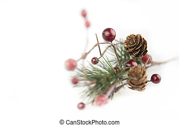 Christmas still life - green pine branch with cones and red...