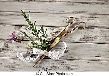 Scissors with rosemary and lavender