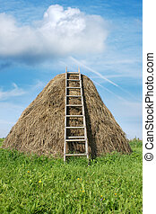 Haystack with a ladder, a vertical picture