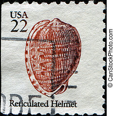 Reticulated Helmet Shell - UNITED STATES OF AMERICA - CIRCA...