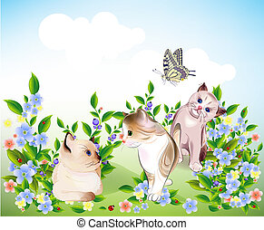 happy  little kittens and butterfly play on the meadow