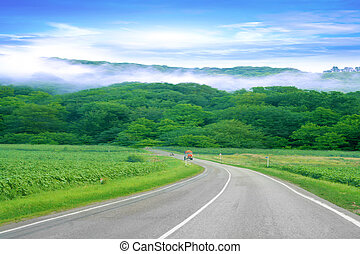 route - summer day and road as travel background