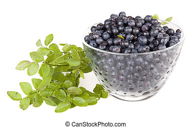 Blueberries in a glass bowl on white background