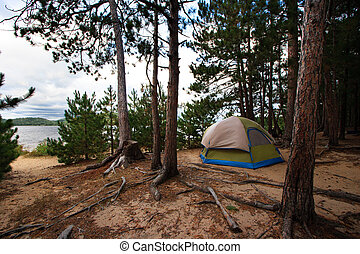 Tent Camping Campsite in the Woods Off the Beach in the...