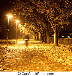 Path at night - Lovely square image of a blurred person...