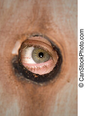 Peeking through a fence knot hole - A person peeks through a...