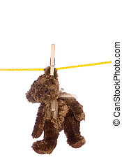 Teddy bear hanging from a clothesline - A teddy bear hangs...