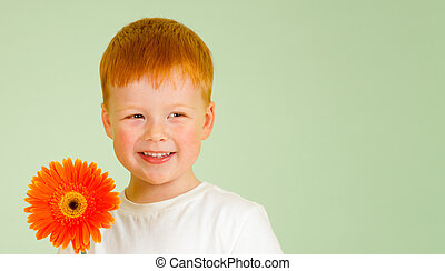 Adorable redheaded boy with orange African daisy on green...