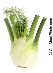 Fennel - Fresh, organic fennel on a white background