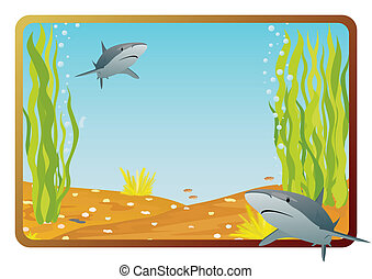 Shark - Marine life on background frame with the underwater...