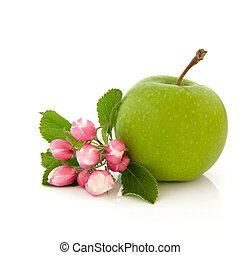 Apple Fruit and Flower Blossom