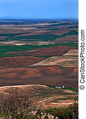 Landscape of Rolling Farmland Over Great Distance