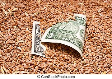 um, dólar, trigo