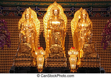 Chinese style golden buddha in dragon temple in Thailand