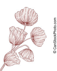 Vector poppies - Vector illustration with blossoming poppies...