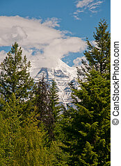 Misty Mount Robson - Mount Robson with peak covered in mist...