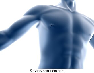 body - 3d man body background