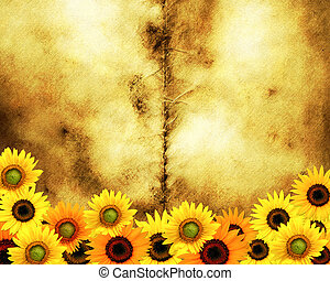 Grunge paper background with bright yellow sunflowers and...