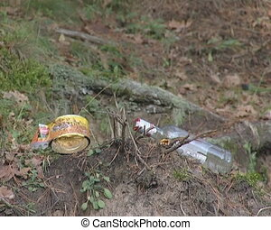 Litter near ant nest in forest. Environmental pollution.