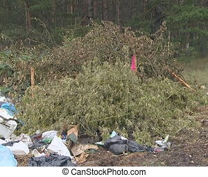 Huge heap of garbage left at forest - Huge heap of garbage...