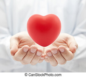 saúde, seguro, ou, Amor, conceito